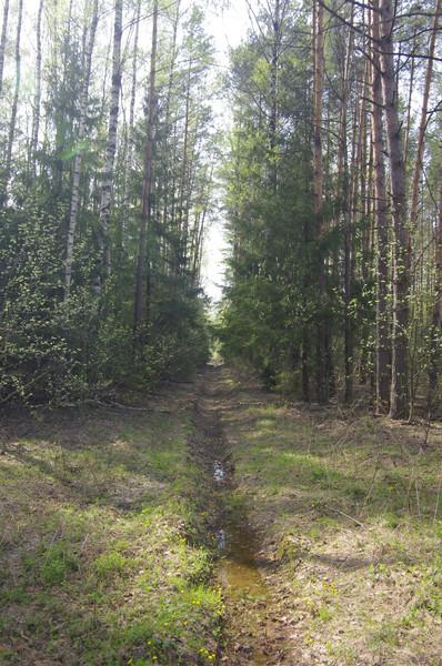 http://content.foto.mail.ru/mail/shel1983/59131/i-59145.jpg