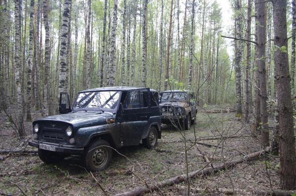 http://content.foto.mail.ru/mail/shel1983/59131/i-59202.jpg