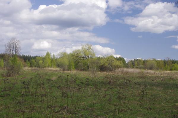 http://content.foto.mail.ru/mail/shel1983/59131/i-59222.jpg
