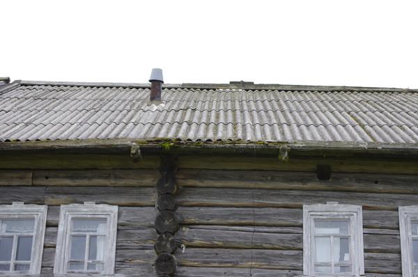 http://content.foto.mail.ru/mail/shel1983/mez-2012-d8/i-60809.jpg