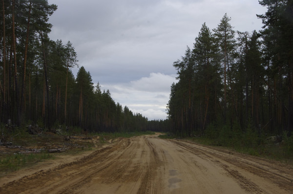 http://content.foto.mail.ru/mail/shel1983/mez-2012_d11/i-61023.jpg