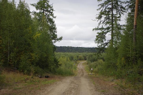 http://content.foto.mail.ru/mail/shel1983/mez-2012_d11/i-61040.jpg