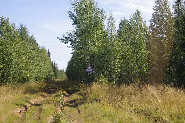 http://content.foto.mail.ru/mail/shel1983/mez-2012_d6/i-60687.jpg