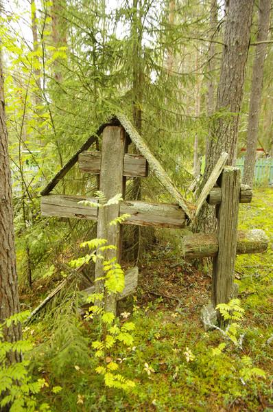 http://content.foto.mail.ru/mail/shel1983/mez-2012_d9/i-60855.jpg