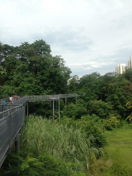 Сингапур - от Хорт парка до ВивоСити.
