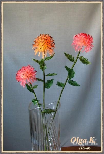 хризантемы из бисера - Вышивка бисером.