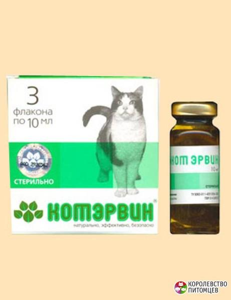 Лечение кота в домашних условиях от мочекаменной болезни у