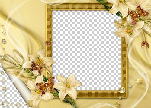 Beautiful HD Wallpapers of Anushka Shetty  Facts N