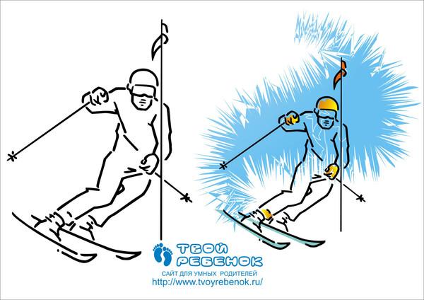 основные виды спорта и их описание