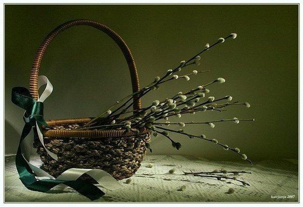 http://content.foto.mail.ru/mail/tanya_popova57/_blogs/i-10479.jpg