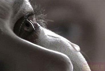 http://content.foto.mail.ru/mail/tatiana-b1/_blogs/i-13.jpg