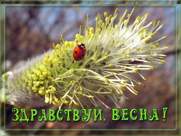http://content.foto.mail.ru/mail/telec-e/2722/i-5386.jpg