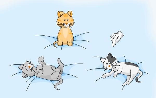 Щекотание кошек