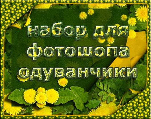 Стили и кисти одуванчики  от Егоровой Татьяны