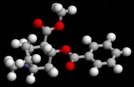 Молекула кокаина