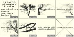 Скачать кисти для фотошоп Дерево без листьев