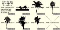 Скачать кисти фотошоп пальма