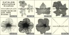 Кисть фотошоп Кленовые листочки и цветочки