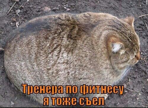 http://content.foto.mail.ru/mail/ujiza/368/i-398.jpg