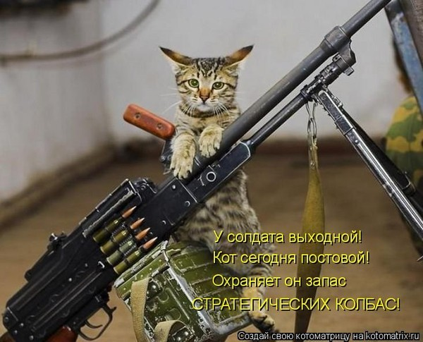 http://content.foto.mail.ru/mail/valentina-3v/1348/i-8136.jpg