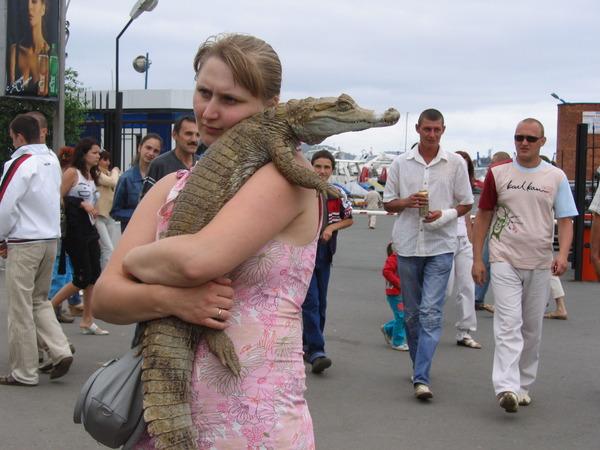Куда обращаться по поводу жестокого обращение с животными?