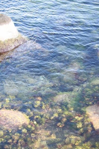 Моя киска на море выпендривается фото 255-449