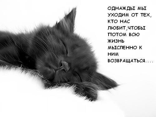 Однажды.....