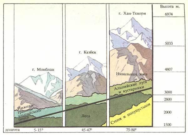 Распределение растительности по вертикальным поясам