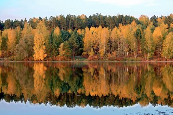 Золотая осень в отражениях