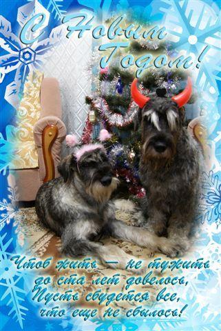 http://content.foto.mail.ru/mail/wladinna/95/s-220.jpg