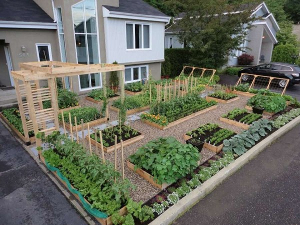 Ландшафтный дизайн огорода своими руками фото 38