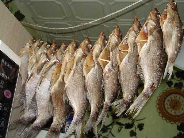 Вялим речную рыбу в домашних условиях