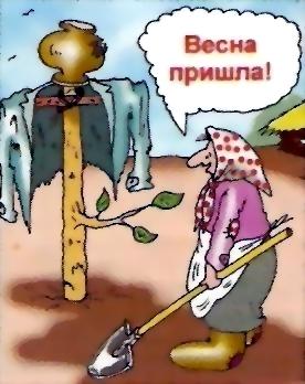 http://content.foto.mail.ru/mail/yushkis/Humour/i-144.jpg